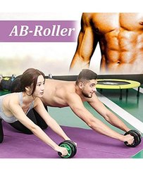 Double Wheel Roller