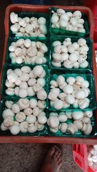Pan India Button Mushroom, Packaging Type: Packet, Packaging Size: 200 G