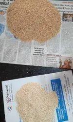 Maharashtra White Sesame Seed, For Natural oil, Packaging Type: Packet