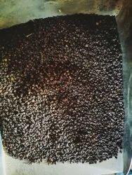 DEVI ENTERPRISES Black De Oiled Cardamom Seeds, Packaging Type: Gunny Bag, Packaging Size: 40kg