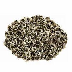 Hybrid Moringa Seeds, Packaging Size: 5kg