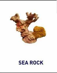 Dr Fish Sea Rocks For Aquarium, Packaging Type: Box, Size: 4*3*4