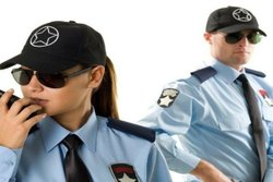 Watchman Service