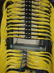 Wireless & Wired Network Service, Pan India, Organization/Office