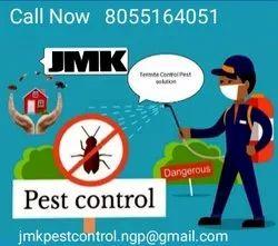 Termite Management Anti-Termite Treatment