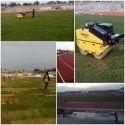 Stadium Grass/Foot Ball Ground Grass