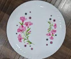 13 Printed Plastic Dinner Plate