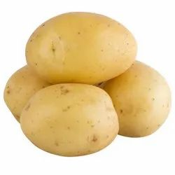 White and yellow A Grade Potato, Packaging Size: 50kg
