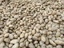 Yellow A Grade Potato, Jute bags, Packaging Size: Jo bhi aapko chahiye