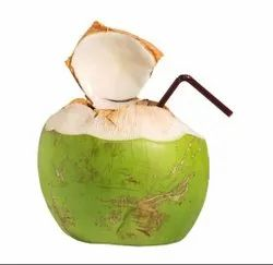 A Grade Andhra Pradesh Coconut, Packaging Size: Loose, Coconut Size: Small