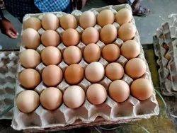 White Cobb Hatching Eggs, Packaging Type: Carton