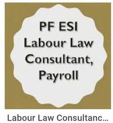 Consulting Firm Salary Processing Payroll Consultant Service, in Pune, Monthly