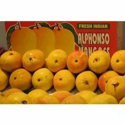 Alphonso Mango 5 dozen