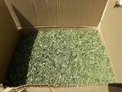 Green Dried Mint Leaves, Packaging Size: 10kg