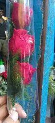 Red Rose Stick