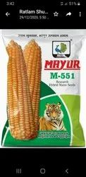 Hybrid Yellow Maize Seed, 12, Packaging Size: 1,4 & 5 Kg