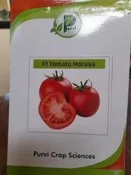 Dried Red Tomato Seeds, For Sowing, Packaging Type: 1 Kg Box 10 Gm 50 Gm