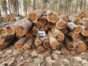 Brazil Round Log