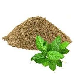 Sirukurinjan Powder ( Gymnema Sylvestre ), 1 Kg,25 Kg, Treatment: Use Ayurvedic Medicines