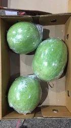 Organic White Ash Gourd