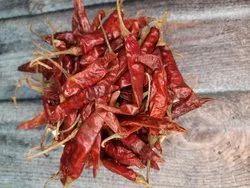 Guntur Teja Dry Red Chilli