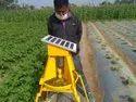 Pestop Solar Trap