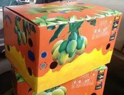 Kesar Mango Box