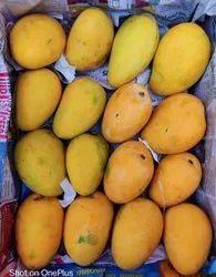 Kastakar Agri Baiganpalli Mango Banganapalli/Badam, Crate, Packaging Size: 20 Kg