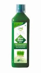 1000 Ml Wheatgrass Juice
