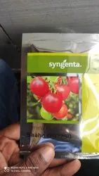 Syngenta Hybrid Sahoo Tomato Seeds