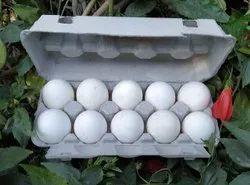 White Shelled Eggs, Packaging Size: 10 pcs/Carton