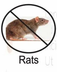Commercial Chemical Treatment Rodent Control Services