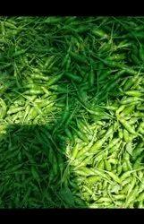 Organic A Grade Thai Green Chillies, For Cooking, Maharashtra
