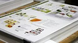 Offset Paper Printing Services, in Lucknow & near by