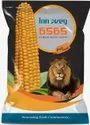 6565 Hybrid Maize Seeds