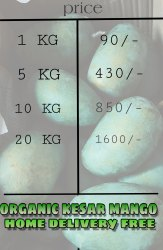 Organic Mango, Box, Packaging Size: 10 Kg