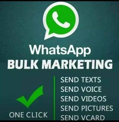 Whatsapp Bulk Sms