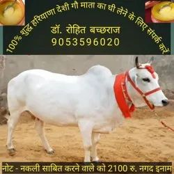 Ghee Dairy Products, For Home, Quantity Per Pack: 1-5 Kg