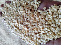 Hybrid Green Chilli seed, Packaging Type: Plastic, Packaging Size: 20gm