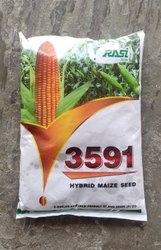 Yellow Rasi 3591 Hybrid Maize seed, Packaging Type: Plastic, Packaging Size: 4 Kg