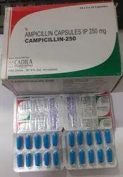 Campicillin 250