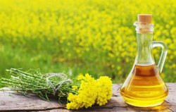 Rupanjali Yellow Kachi Ghani Mustard Oil, Packaging Type: Plastic Bottle, Packaging Size: 1 litre