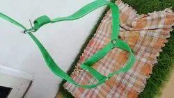 Animal Carrying Belt
