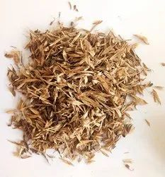 Natural Stylo Hamata Seeds, For Fodder, Packaging Size: 10