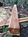 EQuaador Teak Wood