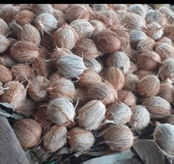 A Grade Pollachi Coconut, Packaging Size: 20 Kg, Coconut Size: Medium