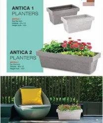 Antican plantars