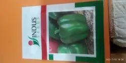 Hybrid Green Capsicum Seeds, Packaging Type: Seal, Packaging Size: 5 Gram
