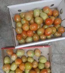 Indian Fresh Tomato