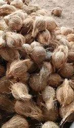 Semi Husked Coconut 65 Pcs Bag